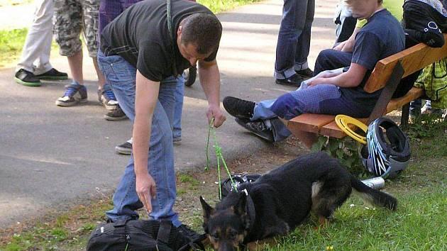 Policista se psem kontroluje v jesenickém parku drogy