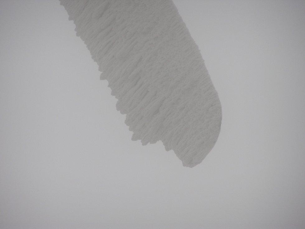Větrná elektrárna v Ostružné. Námraza na listu.
