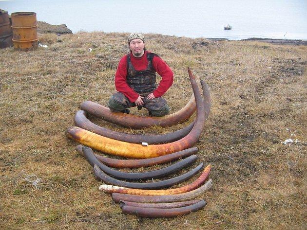 Ze srpnové expedice zábřežského filmaře Martina Strouhala na Sibiř po stopách Eskymo Welzla.