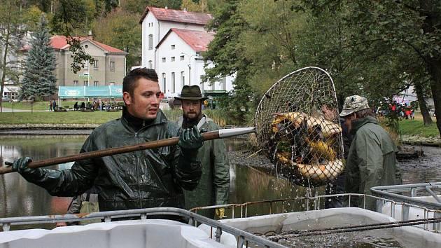 Výlov pivovarského rybníka v Hanušovicích v sobotu 15. října
