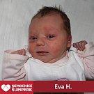 Eva H., Šumperk