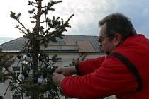 Zábřežský vánoční strom má od úterý 2. prosince světelnou výzdobu.