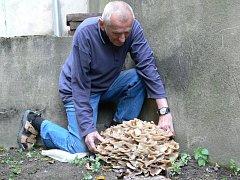 Oldřich Vysoudil ukazuje houbu, která vyrostla na dvoře.