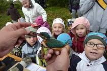 Akce Festivalu ptactva u Třemešských rybníků.
