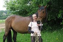 Láska ke koním dovedla Hanu Bednáříkovou až k netradičnímu povolání. V občanském sdružení Ryzáček v malé vesnici Vyšehorky u Mohelnice se vystudovaná fyfzioterapeutka zabývá hipoterapií.