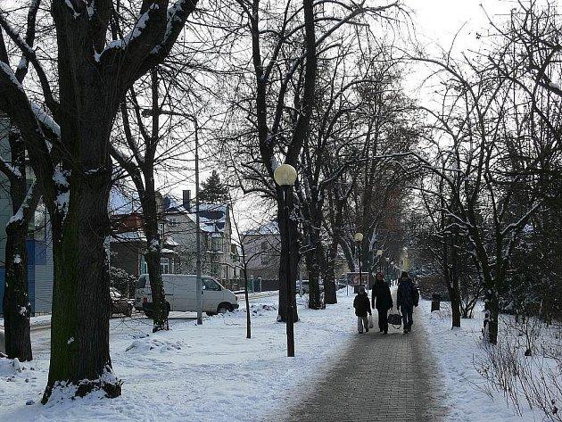 Aktualní stav aleje v ulici 17. listopadu v Šumperku