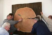 Dřevěný kruh na zdi oranžérie připomíná modřín, který přes 180 let rostl v zámeckém parku v Loučné