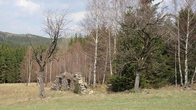 Zaniklá osada Hraničky v Rychlebských horách v roce 2013.