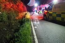 Páteční těžkou dopravní nehodu mezi Úsovem a Policí šetří dopravní policisté.