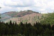 Následky kůrovcové kalamity - pohled na horu Větrná u Zlatých Hor v roce 2018.