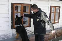 Policisté 24. února kontrolovali rekreační objekty na Jesenicku