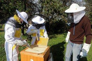 Obor včelař