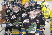 Malí šumperští hokejisté na ilsutračním snímku