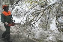 Lesáci odstraňují polomy v okolí Malé Moravy