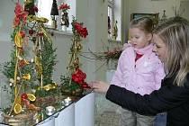 Snímek je z výstavy v roce 2008