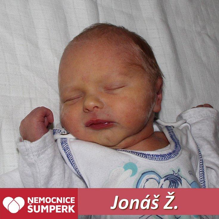 Jonáš Ž., Velké Losiny