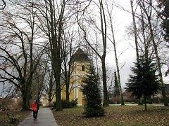 Rozsáhlou revitalizací projdou v brzké době Bezručovy sady v Zábřehu. Město chce v parku u kostela svaté Barbory nechat odstranit dožívající stromy a místo nich vysadit novou alej. Další dřeviny čeká odborné ošetření.