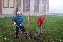 Stromy na Háji sázel i starosta Klopiny a Jan Saksa a manažerka Mikroregionu Mohelnicko Vlasta Miketová