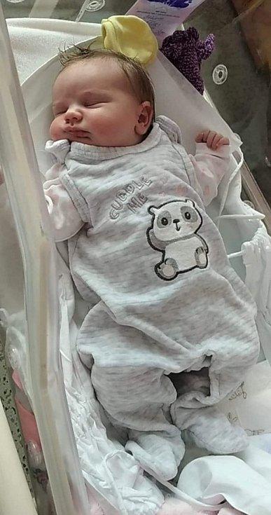 Gábina Zdráhalová, Kojetín, narozena 8. ledna 2021 v Přerově, míra 50 cm, váha 4080 g