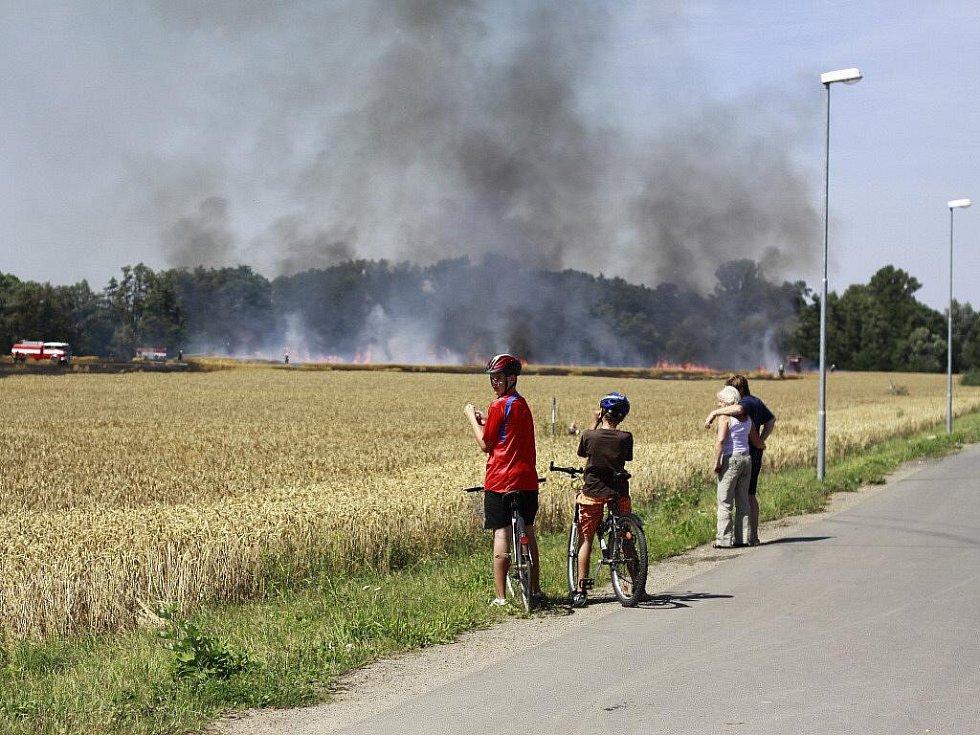 Pohár pšenice u Intersparu v Prostějově