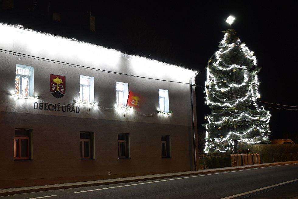 Vánoční strom v Bělé pod Pradědem.