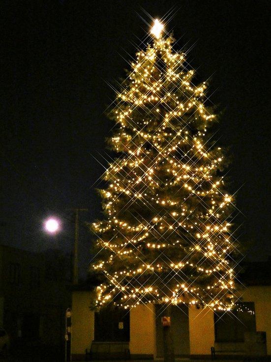 Vánoční strom 2020 ve Skaličce