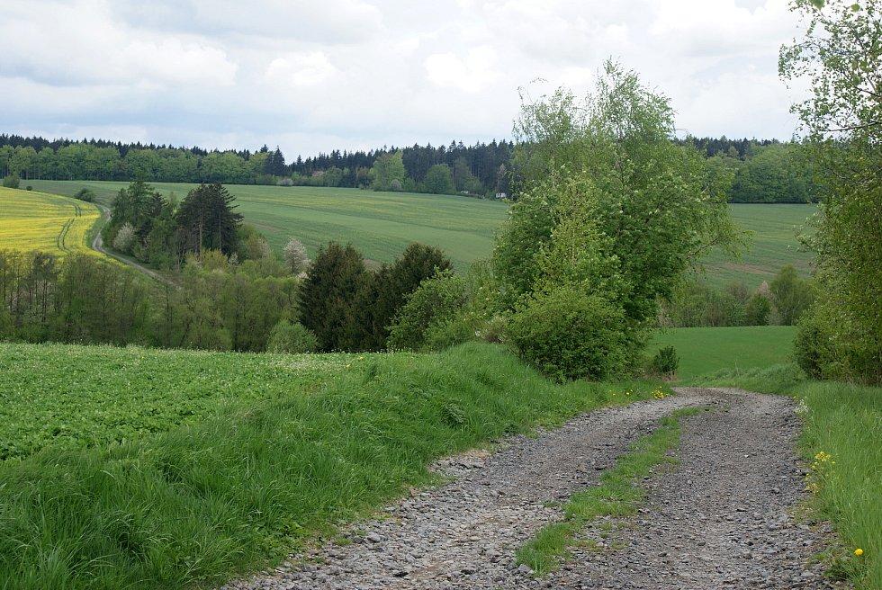 Změny turistického značení na Drahanské vrchovině - nové trasy a rozcestníky - Pohled k Bílému kříži
