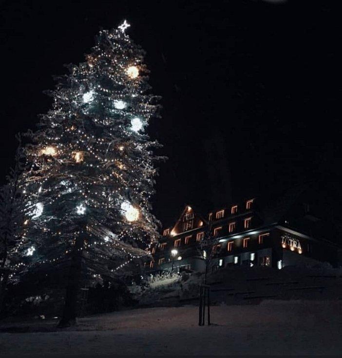 Vánoční strom 2020 ve Velkých Karlovicích před Grandhotelem Tatra