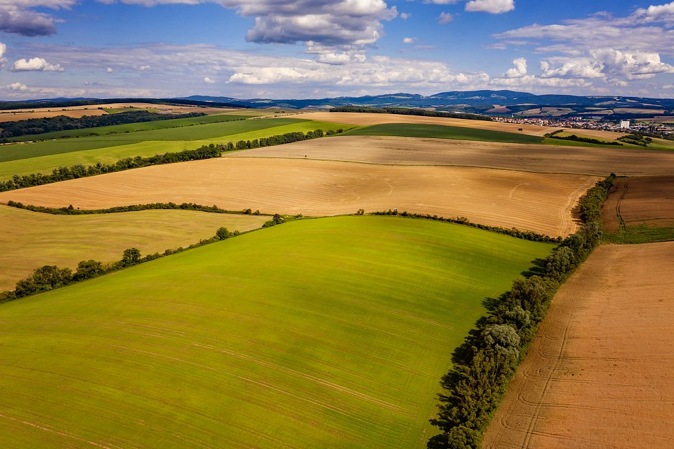 Snímek Radovana Chvíle do soutěže TSTTT kategorie Ekologické zemědělství. Drslavice