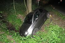 Kvůli srně skončil řidič ve stromě