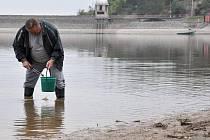 Sběr škeblí z vypouštěné Plumlovské přehrady