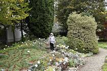 Prostějovská Botanická zahrada Petra Albrechta nabízí zajímavou procházku i v podzimních měsících. 19.10.2020