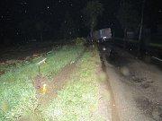 Při havárii porazil řidič i strom.