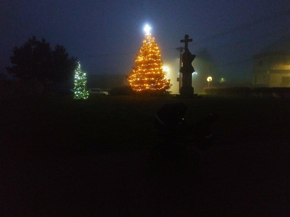 Vánoční strom 2020 v Domašově u Šternberka