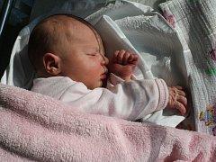Klára Mikulášková, Prostějov, narozena 2. října, 49 cm, 2900 g