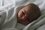 Gabriela Frysová, Prostějov, narozena 31. ledna v Prostějově, míra 49 cm, váha 3150 g