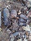 ŠEST GRANÁTŮ. Nevybuchlá munice v lese u Brodku u Konice.