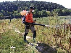 Likvidace plevele na dně plumlovské přehrady pomocí postřiku