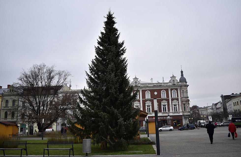 Vánoční strom dorazil na prostějovské náměstí T. G. Masaryka. 23.11. 2020