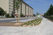 Tylova ulice po rekonstrukci