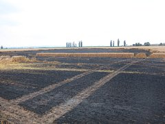 Požár pole u Kralic na Hané.