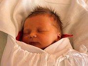 Dominika Studená, Prostějov, narozena 27. září v Prostějově, míra 50 cm, váha 3050 g