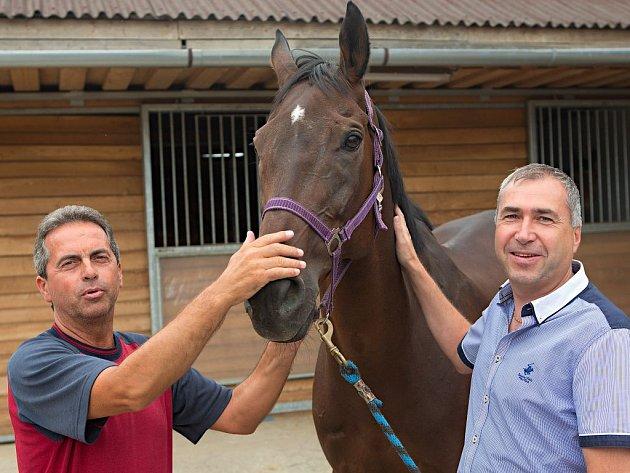 Trenér Stanislav Popelka (vlevo), kůň Nikas a majitel Petr Kupka