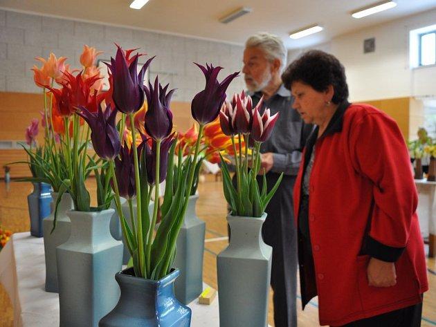 Výstava květin v  sokolovně v Brodku u Prostějova