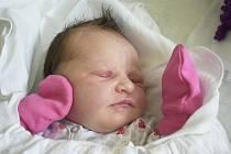 Emma Hudcová, Držovice, narozena 23. června v Prostějově, míra 52 cm, váha 3850 g