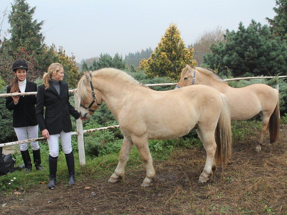 Hubertova jízda přilákala početnou skupinu milovníků koní.