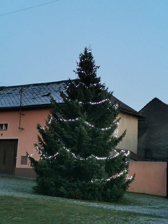 Vánoční strom 2020 v Radvanicích
