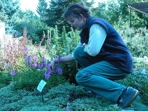 Chceme tu být víc pro lidi, zní z botanické zahrady.