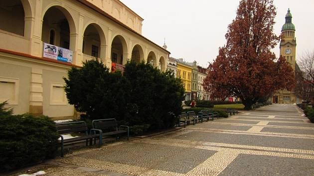 Stromy na náměstí T. G. M. v Prostějově