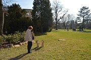 Zahájení sezony na Hanácké ambasádě v zámeckém areálu v Čechách pod Kosířem